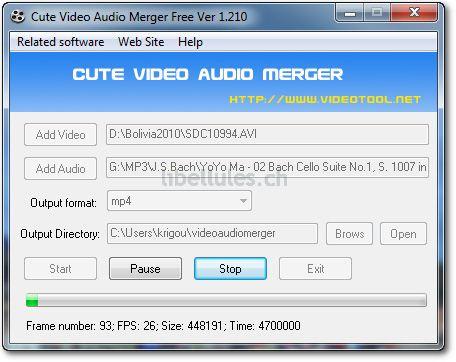 Cute Video Audio Merger Free Version
