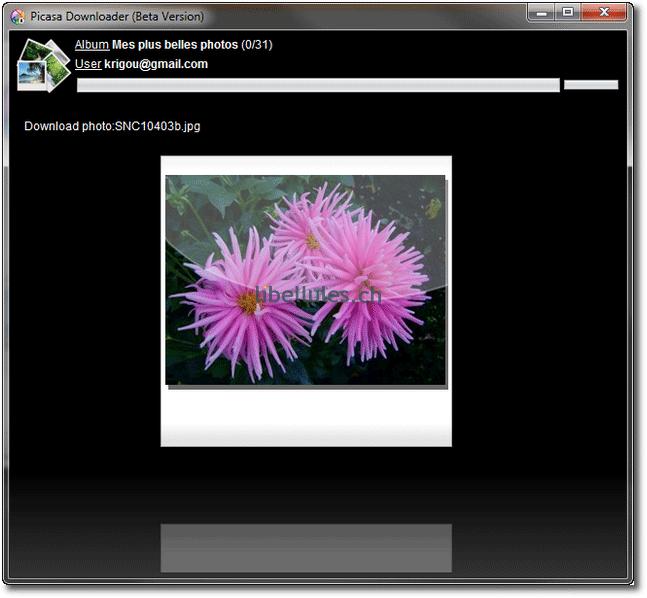 Picasa Downloader