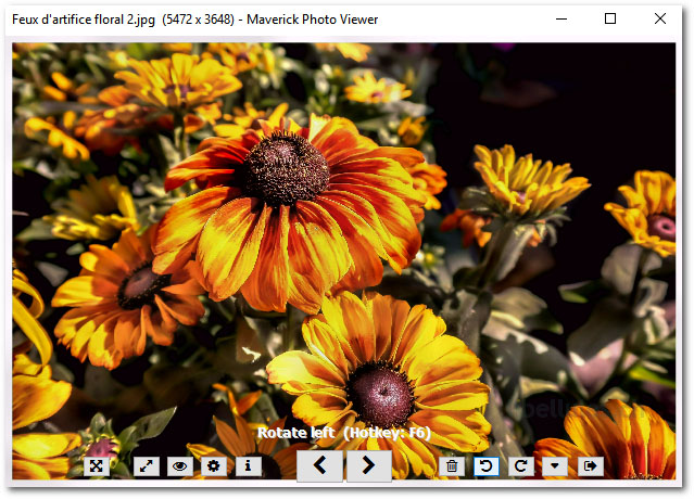 Maverick Photo Viewer